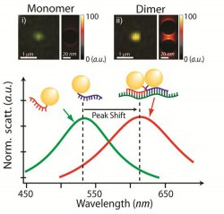 Time-resolved Imaging of Single mRNA  Splicing in Living Cells