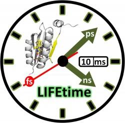 LIFEtime_3504_web_3