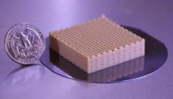 yeast_lattice_quarter875x500