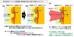 20191002_1_fig1