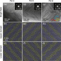 Lin-Zhou-micrographs