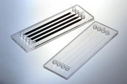 pm-abschluss-nrw-projekt-sequlas-2-mikrofluid-bauteil