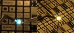 LED-1
