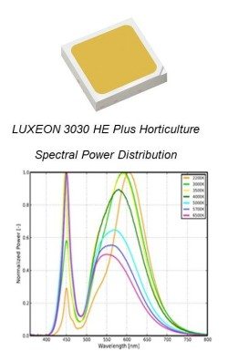 LUXEON-3030-HE-Plus-Horticulture-image
