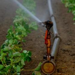 irrigation_holger-schue_pixabay_500