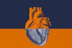 header_ai_heart_imaging